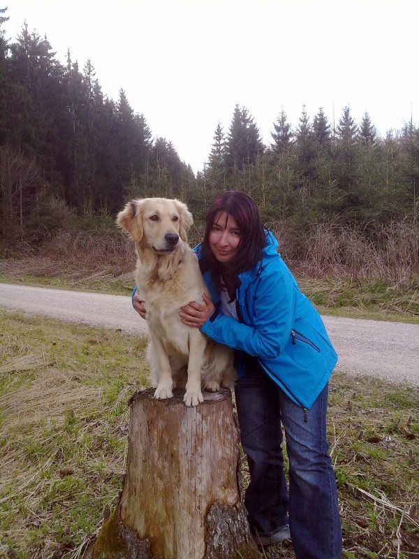 Bilder von den Golden Retriever vom Limes  copyright (c) 2011.